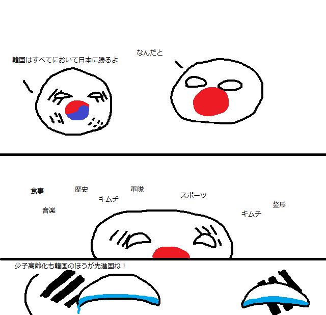 日本 ポーランド ボール